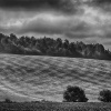 Black & White Photography Magazine - The French Countryside