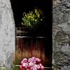 Apricale Door