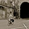 Biking to the Market