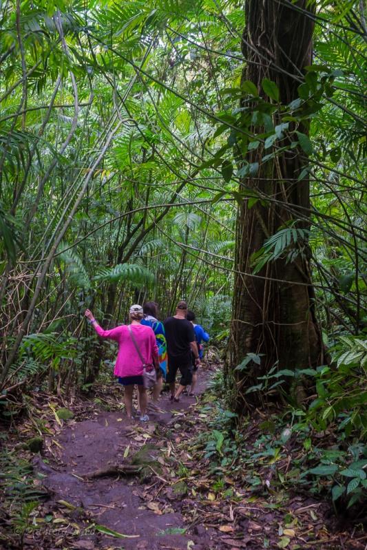 Mombacho Volcano Hike 1