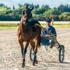 Cart Racing 11