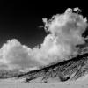 Cape Cod Black & White