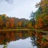New England 17