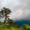 Blue Ridge Mountains 8