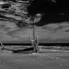 Botany Bay Beach 1-1