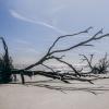 Botany Bay Beach 3