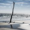 Botany Bay Beach 15