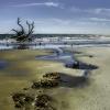 Botany Bay Beach 3-1
