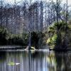 Riverbend Park 3