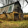 Abandoned Homestead Barn