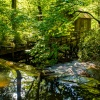Grist Mill 6
